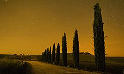 Tuscany Stars